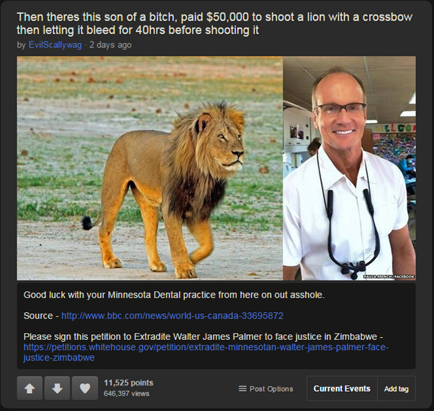 Cecil The Lion 11