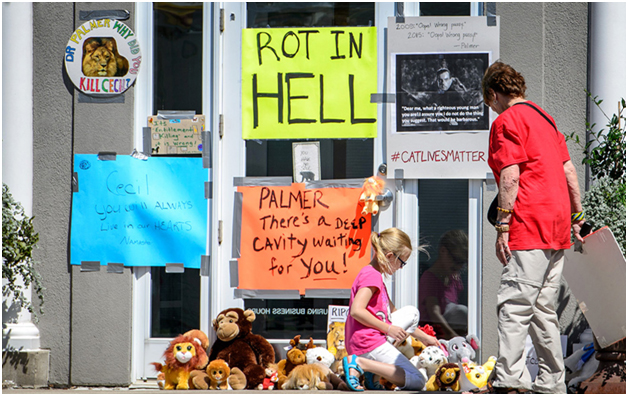protesters of dentist who killed Cecil The Lion
